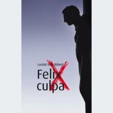 Laczkó Vass Róbert: Felix culpa