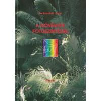Fodorpataki László: A növények fotoszintézise