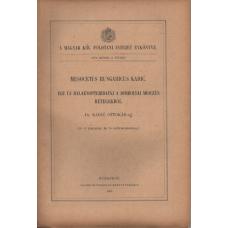 Dr. Kadic Ottokár: Mesocetus Hungaricus Kadic