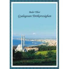 Beder Tibor: Gyalogosan Törökországban